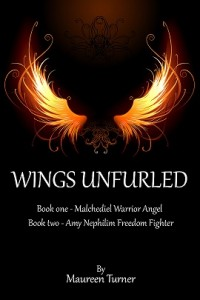 Wings cover copy1